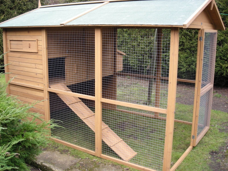 Buller kaninforum for Outdoor rabbit enclosure ideas